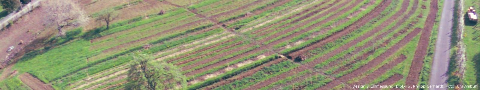 Keyline Design für SoLaWi minga.ch, Diplom-Forstwirt Philipp Gerhardt, Agroforstplanung 'baumfeldwirtschaft.de'
