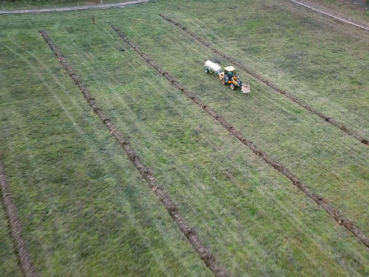 Agroforstsystem in Keyline Design / Schlüssellinienkultur mit Fruchtertragsgehölzen (Esskastanie, Walnuss) in Brandenburg nahe Berlin.
