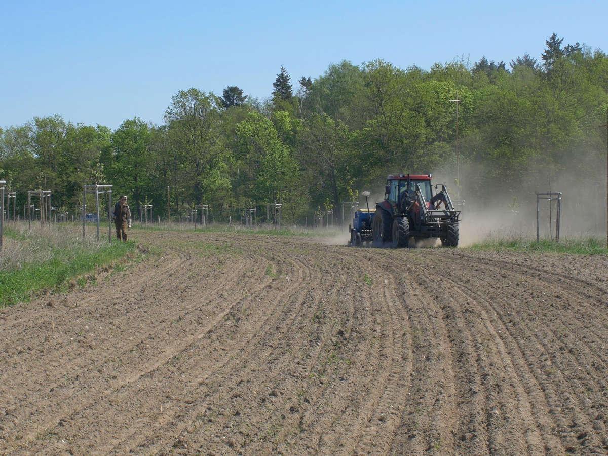 Agroforstkulturen und Schlüssellinien/ Keyline Design: Leichte Bewirtschaftung bei optimalem Wasserrückhalt & Witterungsschutz.