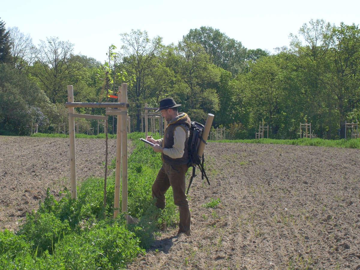 Kontrolle und Begleitung von Agroforst-, Keyline-Projekten und regenerativer Landwirtschaft.